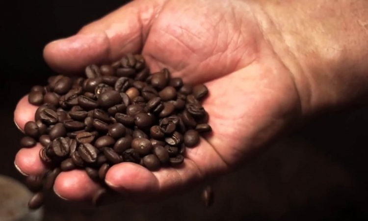 101 cafè seregno 1 - vivi seregno